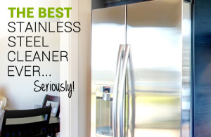 best stainless steel cleaner