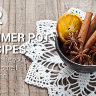 12 Simmer Pot Recipes To Make Your House Smell Amazing