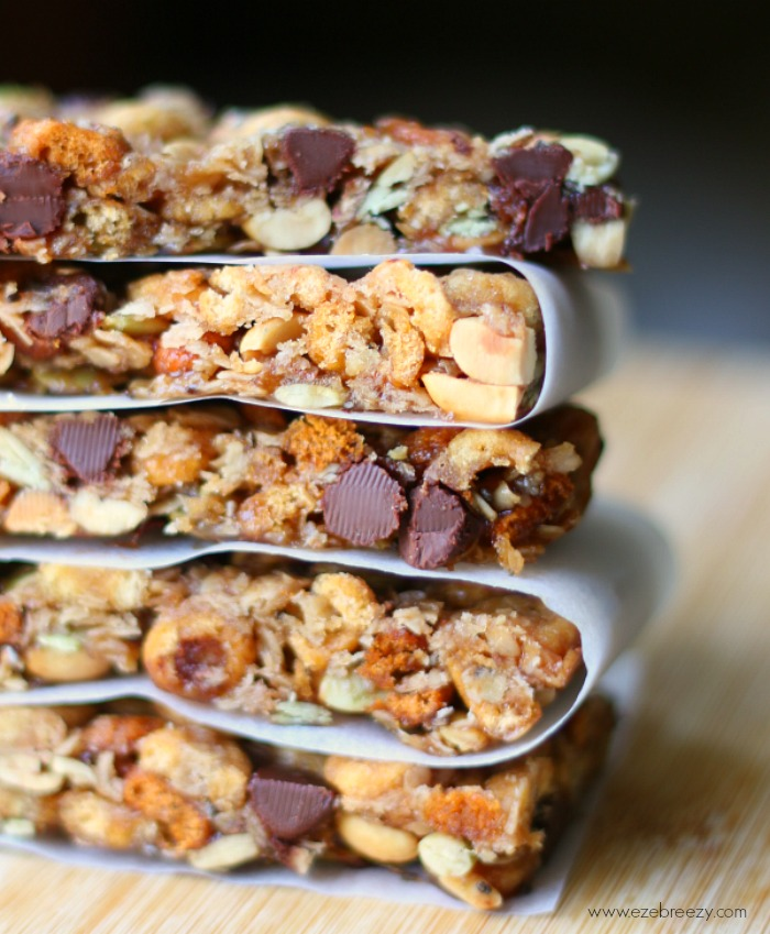 Tasty, easy to make Trail Mix Granola Bars
