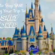 How To Stay Sane Planning Your Trip To Disney World