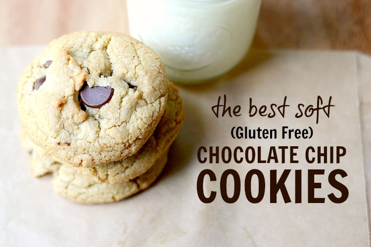 The BEST SOFT AND CHEWY Chocolate Chip Cookie - and it just so happends to be gluten free! | www.ezebreezy.com